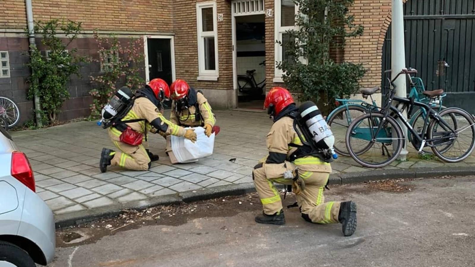 """Dierenambulance en brandweer slaan handen ineen: """"Samen dieren van coronapatiënten ophalen"""""""